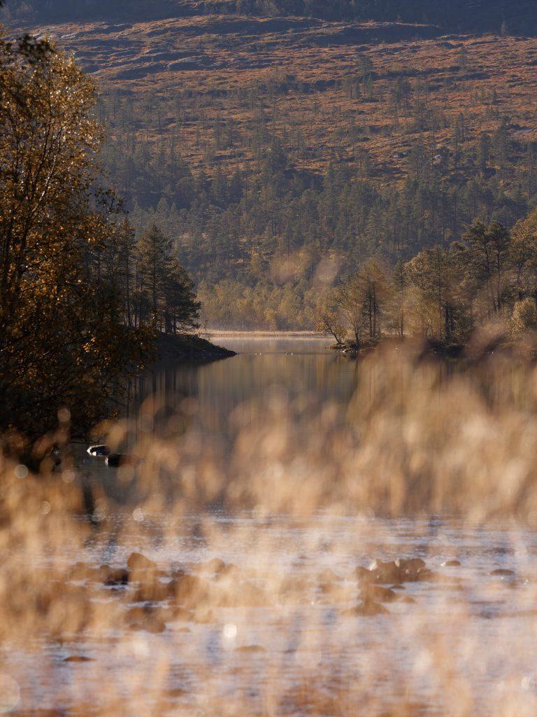 loris fae photographe val d'oise roadtrip norvège