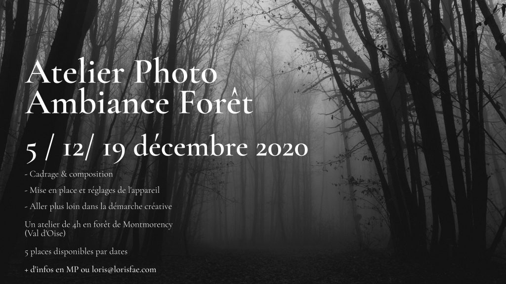 Atelier ambiance forêt Loris fae photographe val d'oise