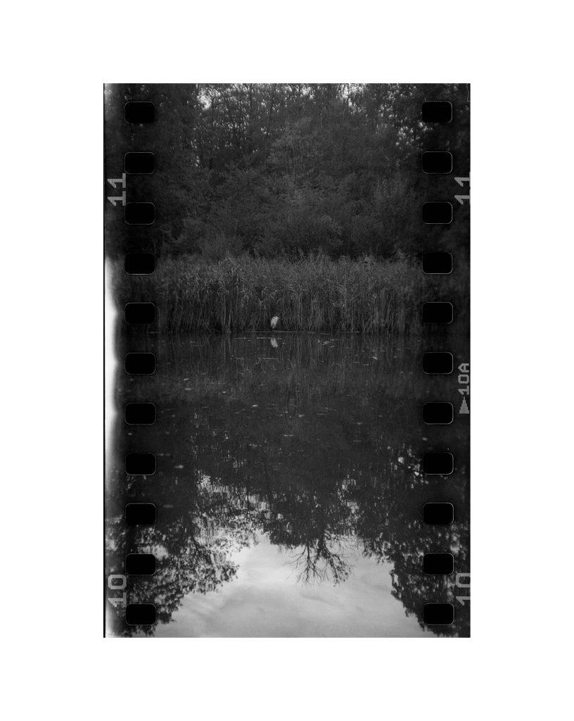 Loris Faé photographe Val d'Oise - 35mm in mamiya c220