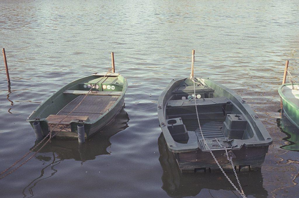 loris fae argentique photographe val d'oise enghien les bains